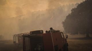 Μεγάλη φωτιά στη Σιθωνία Χαλκιδικής - Καλύτερη η εικόνα στο Φίλυρο