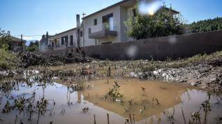 Βόρεια Εύβοια: Στην αγνοούμενη του «Ζορμπά» ανήκει η σορός που βρέθηκε κοντά στο Μαντούδι