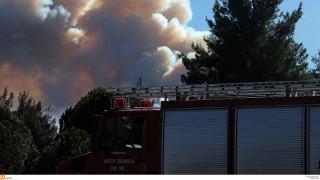 Σιθωνία Χαλκιδικής: Συνεχίζεται η μάχη με τις φλόγες - Καλύτερη η εικόνα