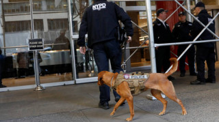 FBI: Δεν αποκλείεται η ύπαρξη και άλλων τρομο-δεμάτων