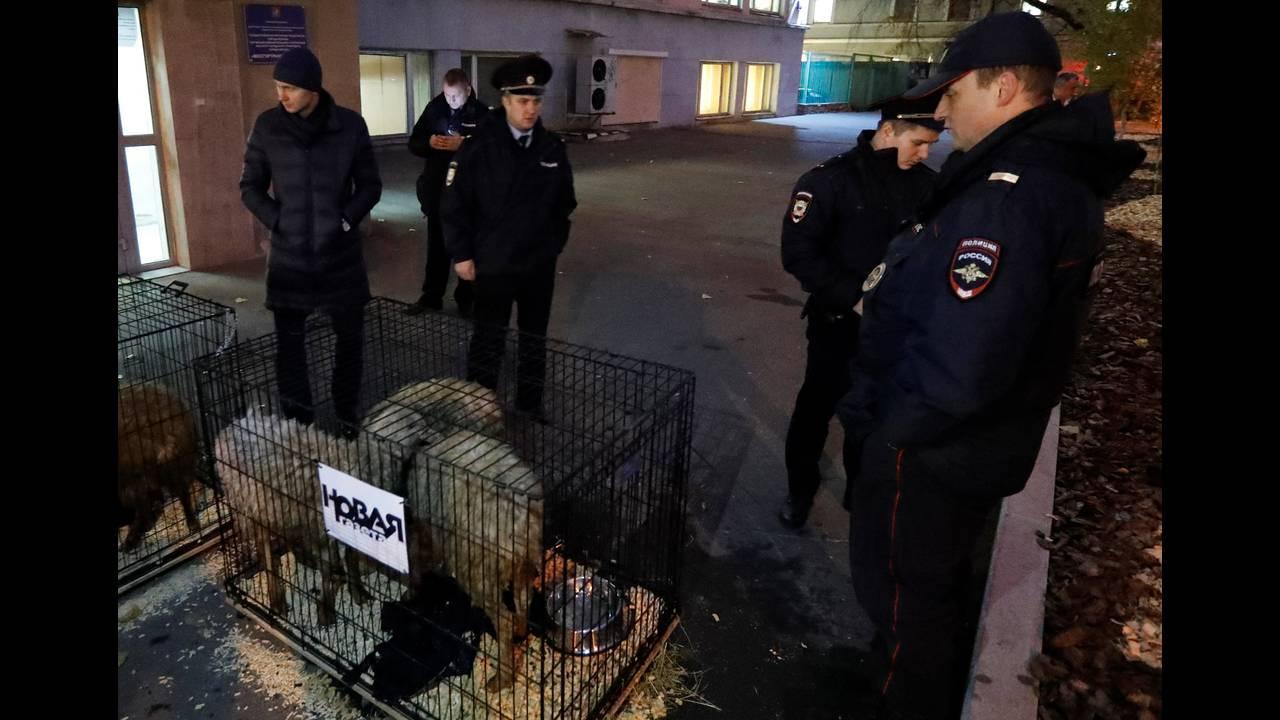 https://cdn.cnngreece.gr/media/news/2018/10/29/152623/photos/snapshot/2018-10-29T165954Z_200969800_RC1E2F0FB9B0_RTRMADP_3_RUSSIA-NEWSPAPER-THREAT.JPG