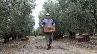 ΕΛΓΑ: Αύριο θα πληρωθούν αγρότες και κτηνοτρόφοι