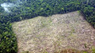 Τεράστια απειλή για την ανθρωπότητα η απώλεια της βιοποικιλότητας