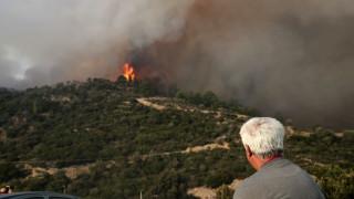 Υπό μερικό έλεγχο η φωτιά στη Σέτα Ευβοίας