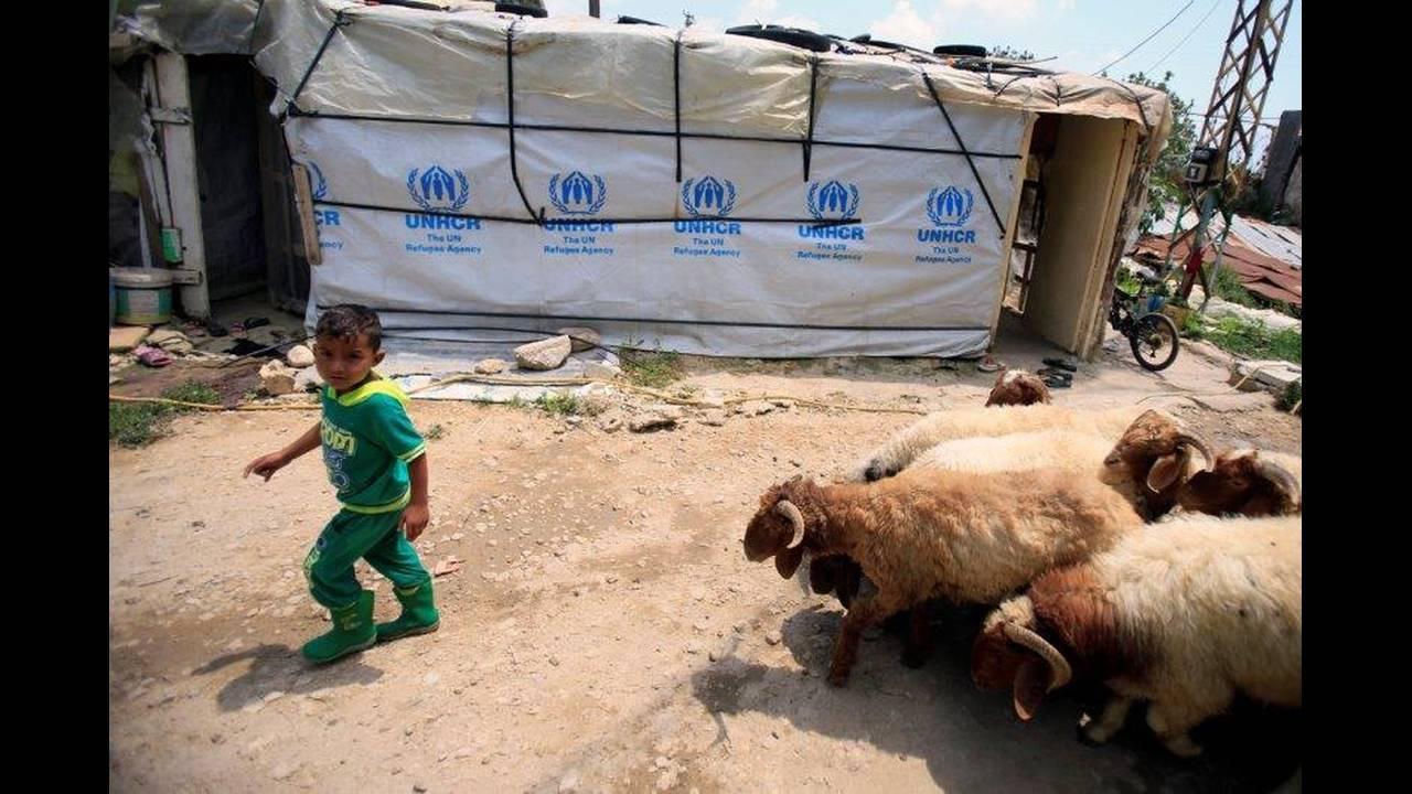 https://cdn.cnngreece.gr/media/news/2018/11/06/153695/photos/snapshot/2018-06-13T133552Z_1842275061_RC132CA17050_RTRMADP_3_MIDEAST-CRISIS-LEBANON-SYRIA-REFUGEES.jpg