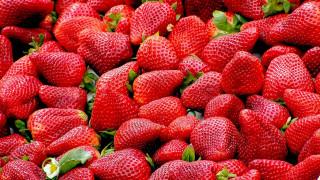 Αυστραλία: Λύθηκε... εν μέρει το μυστήριο με τις βελόνες σε φράουλες