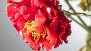 Eύθραυστα ως άνθη! Λουλούδια από μουράνο ανθίζουν στη Βενετία