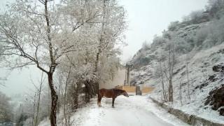 Καιρός: Άρχισαν οι πρώτες χιονοπτώσεις στη χώρα μας – Δείτε LIVE πού χιονίζει αυτή την ώρα