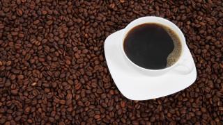 Έρευνα: Τι αποκαλύπτουν για το DNA μας οι προτιμήσεις μας στον… καφέ