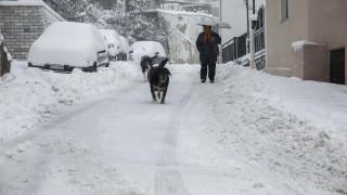 Έκτακτο δελτίο EMY: Χιόνια και στην Αττική σε λίγες ώρες - Πού θα «χτυπήσουν» τα έντονα φαινόμενα