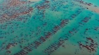 Εντοπίστηκαν τα ερείπια της χαμένης Ατλαντίδας;