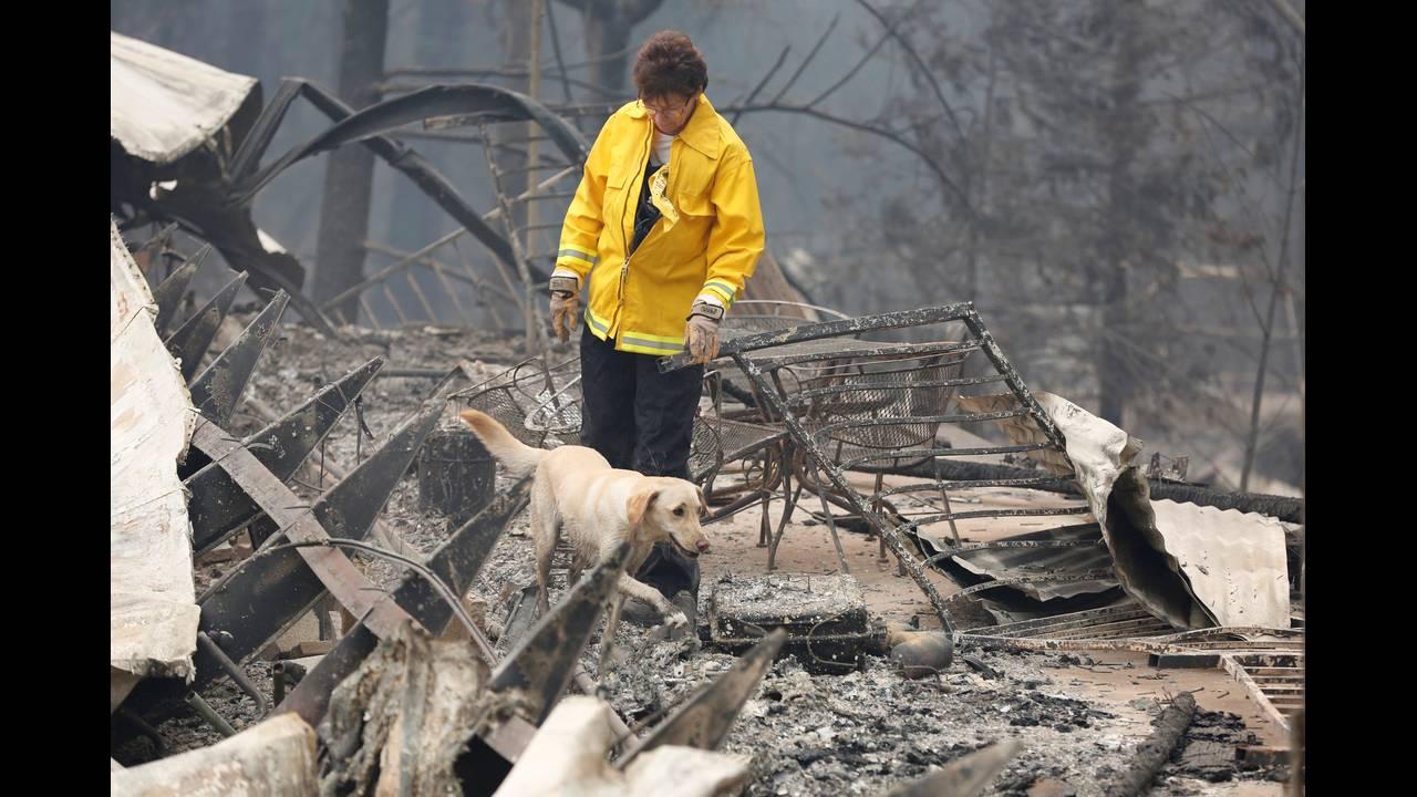https://cdn.cnngreece.gr/media/news/2018/11/19/155249/photos/snapshot/2018-11-14T233945Z_1014379475_RC118335C6D0_RTRMADP_3_CALIFORNIA-WILDFIRES-DOGS.JPG