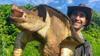Animal Planet - Coyote Peterson: Σύμπραξη για μία νέα σειρά για την άγρια ζωή