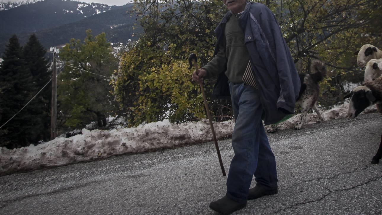 Τρίκαλα: Απίστευτη περιπέτεια για δύο βοσκούς μέσα στο χιόνι