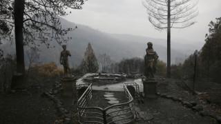 Υπό πλήρη έλεγχο ο πύρινος «εφιάλτης» στην Καλιφόρνια
