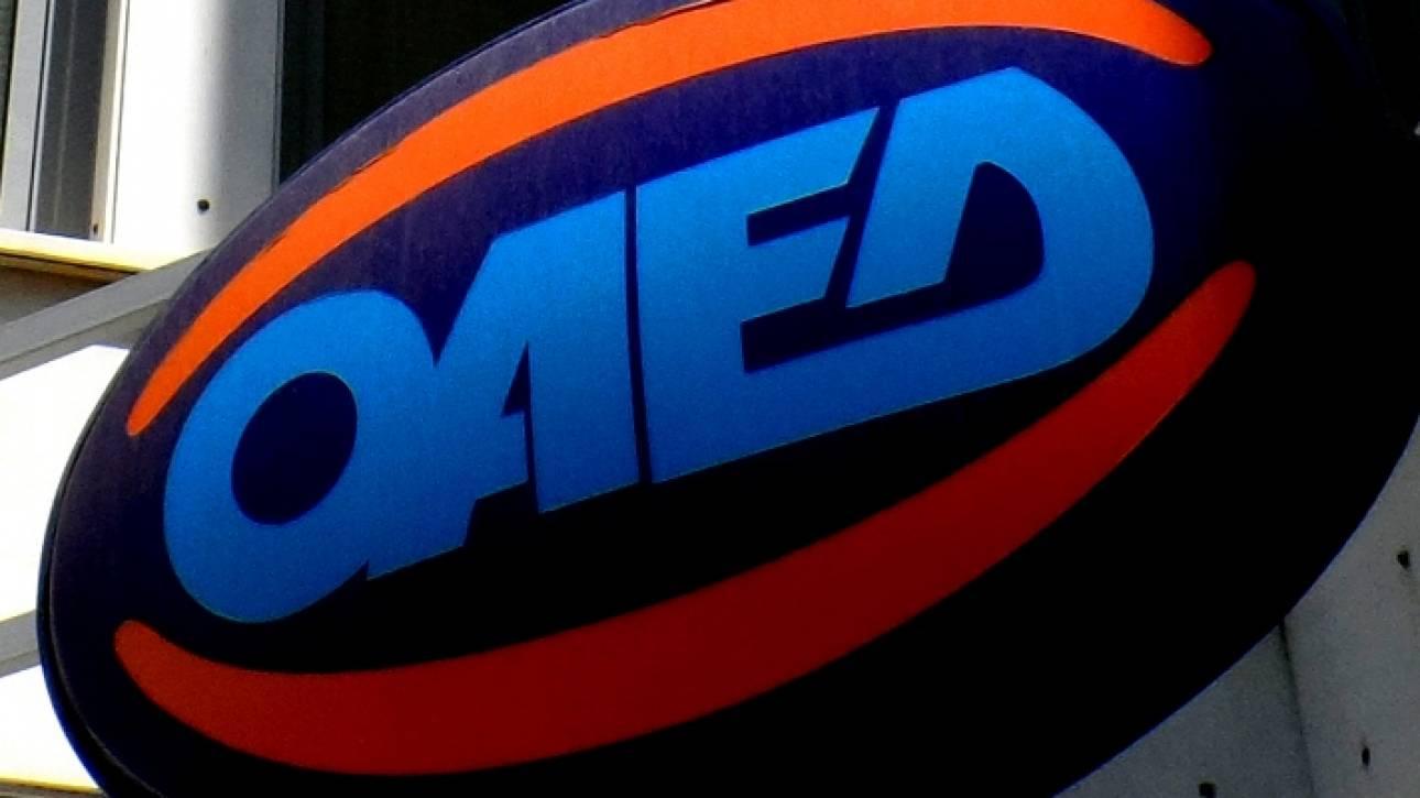 ΟΑΕΔ: «Άνοιξε» η πλατφόρμα για επιδότηση 6.000 ανέργων - Πώς θα πάρετε 1.600 ευρώ