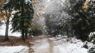 Καιρός: Δείτε live σε ποιες περιοχές χιονίζει - Πού θα «χτυπήσει» η κακοκαιρία τις επόμενες ώρες