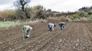 Πληρώνονται 10.378 δικαιούχοι του προγράμματος Βιολογικής Γεωργίας