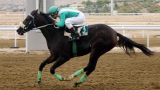 ΕΝΕΠΔΙ: Το νέο αθλητικό νομοσχέδιο βάζει σωστές βάσεις για τις ελληνικές ιπποδρομίες