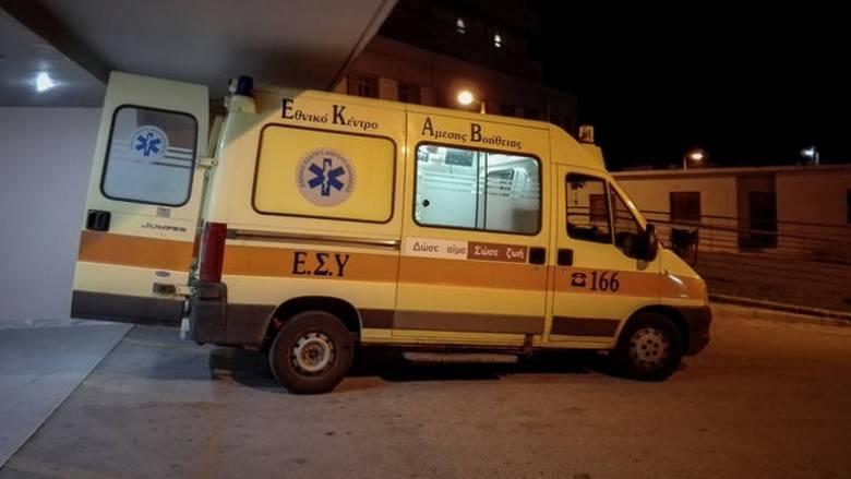 Σκληρές εικόνες: Αυτοκίνητο τράκαρε με άλογο στο Καρπενήσι