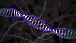 Επαναστατική κι αμφιλεγόμενη: Η γέννηση των πρώτων γενετικά τροποποιημένων μωρών διχάζει
