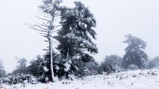 Χαλάει ο καιρός – Πότε και πού θα χιονίσει - Σε ποιες περιοχές θα είναι έντονα τα φαινόμενα