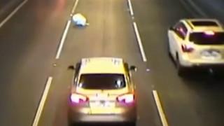 Τι συνέβη όταν σκύλος έπεσε από παράθυρο αυτοκινήτου σε πολυσύχναστο δρόμο της Αυστραλίας
