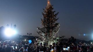 Φωταγωγήθηκε το χριστουγεννιάτικο δέντρο στο πυρόπληκτο Μάτι