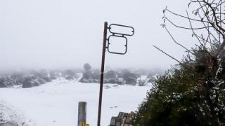 Καιρός: Βροχές, καταιγίδες και χιόνια – Σε ποιες περιοχές τα φαινόμενα θα είναι ισχυρά