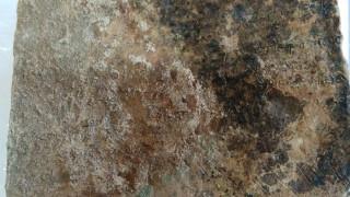 Στα 10 σημαντικότερα ευρήματα του 2018 η πήλινη πλάκα με στίχους του Ομήρου στην Αρχαία Ολυμπία