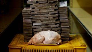 «Zούμε στην εποχή του κοτόπουλου»: Πώς τα κόκκαλά τους θα θυμίζουν την ανθρωπότητα μετά το τέλος της
