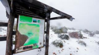 Καιρός: Πυκνή χιονόπτωση στην Πάρνηθα – Δείτε live εικόνα