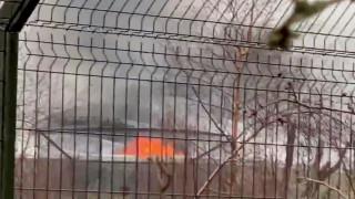 Λήξη συναγερμού στη Βρετανία: Σώα τα ζώα από την μεγάλη πυρκαγιά