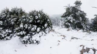 Καιρός: Έκτακτο δελτίο επιδείνωσης - 'Ερχονται βροχές, καταιγίδες και χιόνια