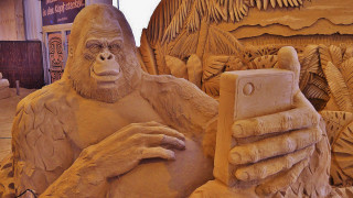 Selfie μαϊμούς, νεκρός κερδίζει εκλογές κα άντρας δαγκώνει σκύλο: Οι παράξενες ιστορίες του 2018