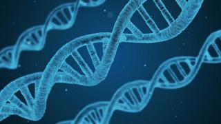 Science: Αυτό είναι το σημαντικότερο επιστημονικό επίτευγμα του 2018
