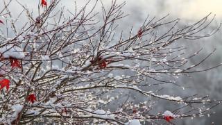 Καιρός: Η ΕΜΥ προειδοποιεί για χιόνια τα Χριστούγεννα – Πού θα πέσουν