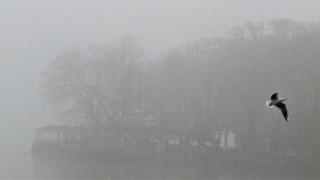 «Μαγικές» εικόνες: Τα Γιάννενα «παραδομένα» στην ομίχλη