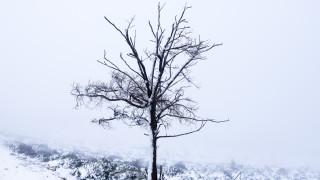 Καιρός: Κάλαντα με... ομπρέλα - Χιόνια και στην Αττική τα Χριστούγεννα