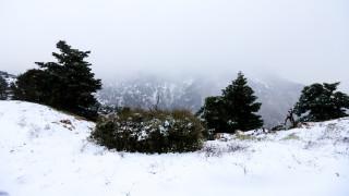 Καιρός: Χριστούγεννα με χιόνια - Δείτε πού θα πέσει κατακόρυφα η θερμοκρασία