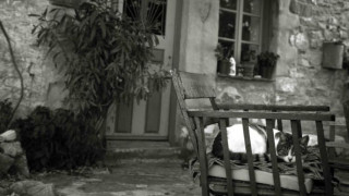 Ιστορία που «ραγίζει» καρδιές στο Βόλο: «Έφυγαν» αγκαλιασμένοι στο κρεβάτι τους τα Χριστούγεννα