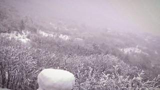 Καιρός: Πυκνή χιονόπτωση στον Παρνασσό - Πάνω από 20 εκατοστά το χιόνι