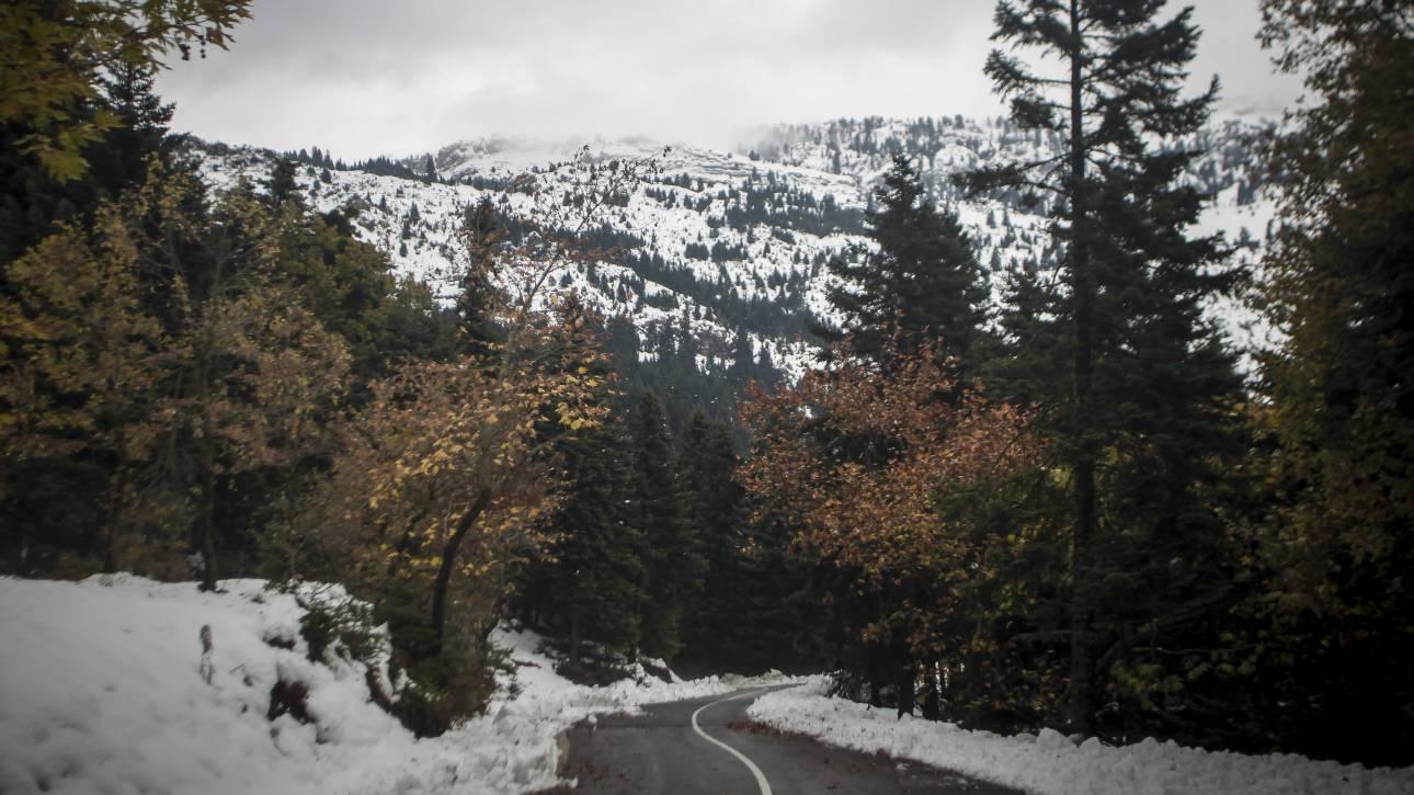 Κακοκαιρία: Παγωνιά σε όλη την Ελλάδα την Τετάρτη - Πέφτει κι άλλο η θερμοκρασία