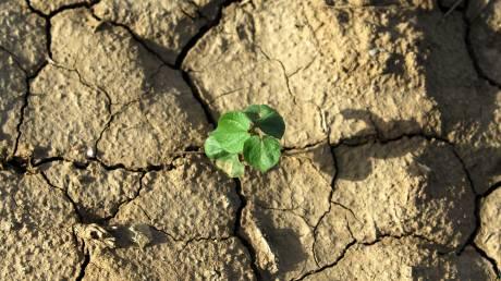 Κλιματική αλλαγή: Ο κίνδυνος που θα αντιμετωπίσει στο μέλλον η Ελλάδα