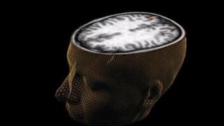 Δέκα νέα πράγματα που μάθαμε για τον εγκέφαλο το 2018