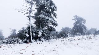 Κακοκαιρία «Ραφαήλ»: Ντυμένες στα «λευκά» πολλές περιοχές της χώρας