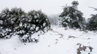 Πρωτοχρονιά με χιόνια και τσουχτερό κρύο: Ποιες περιοχές θα «σαρώσει» ο Ραφαήλ
