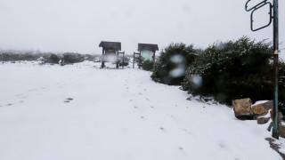 Κακοκαιρία: Πυκνές χιονοπτώσεις, ψύχος και προβλήματα έφερε ο «Ραφαήλ»