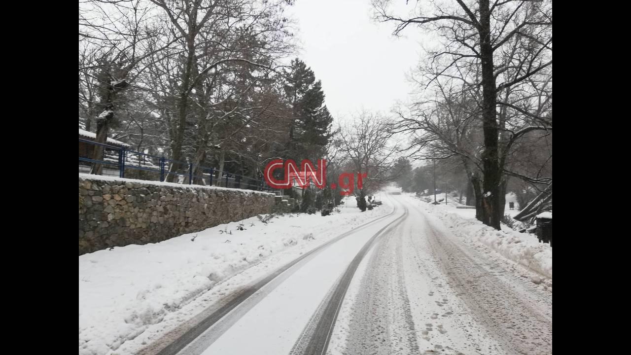 https://cdn.cnngreece.gr/media/news/2019/01/03/160555/photos/snapshot/49239978_529100460906870_3207936929085521920_n.jpg