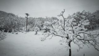 Κακοκαιρία «Σοφία»: Ξεπέρασε το ένα μέτρο το χιόνι στα ορεινά Τρίκαλα